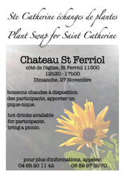 Ste C Atherine Flier (New)
